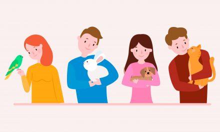 Zbiórka karmy dla zwierzaków