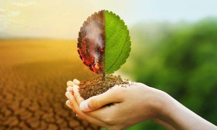 Przywróć naszą Ziemię! Webinarium dla młodzieży